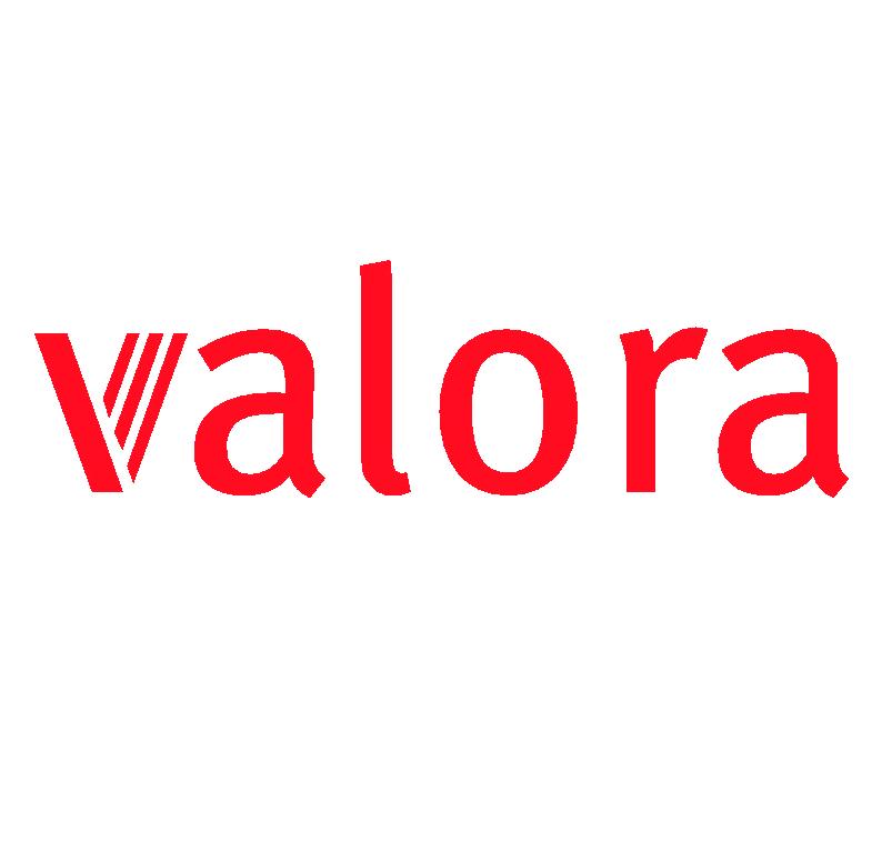 Recruiting Campaign for Valora